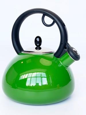 GRANCHIO Чайник эмалированный Capriccio Verde, объем 2,5 л.